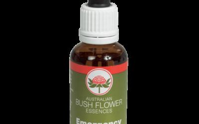 Waratah il fiore del coraggio – Bush Flower Essences